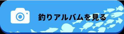 川崎リサイクルゴーゴー釣りアルバム